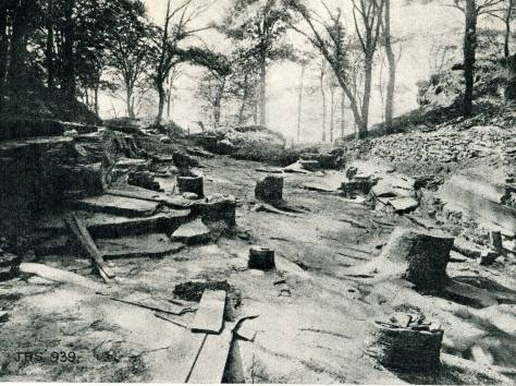 Fossil Grove in Victoria Park ,Glasgow. This photo taken in 1888 shows the remnants of giant club mosses which would have dominated the landscape.